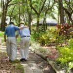 Caregiving Walk JAHF