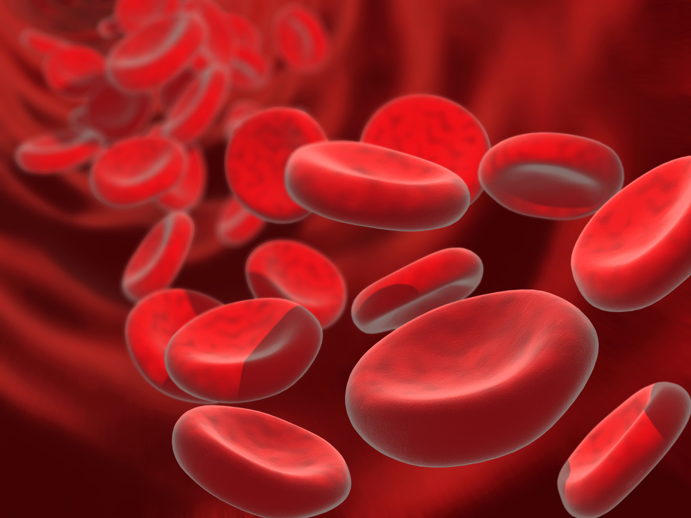 Anemia In The Older Adult 10 Common Causes What To Ask